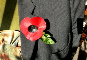 Remembrance poppy 11.12