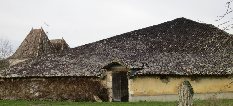 Roofs, Pomport 1.13