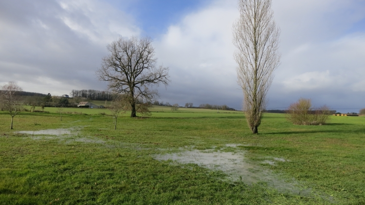 Waterlogged field, Sigoules 1.13