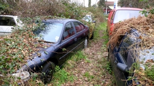 Car dump, Bashley 2.13
