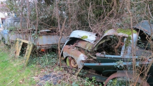 Car dump, Bashley (2) 2.13
