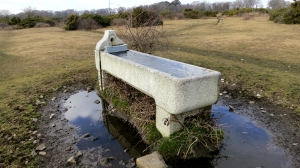 Horse trough, Wootton Heath 2.13