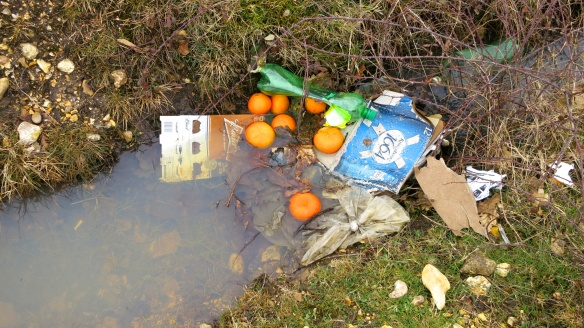 Oranges in ditch
