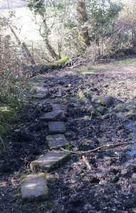 Stepping stones 3.13