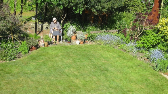 Mum and lawn