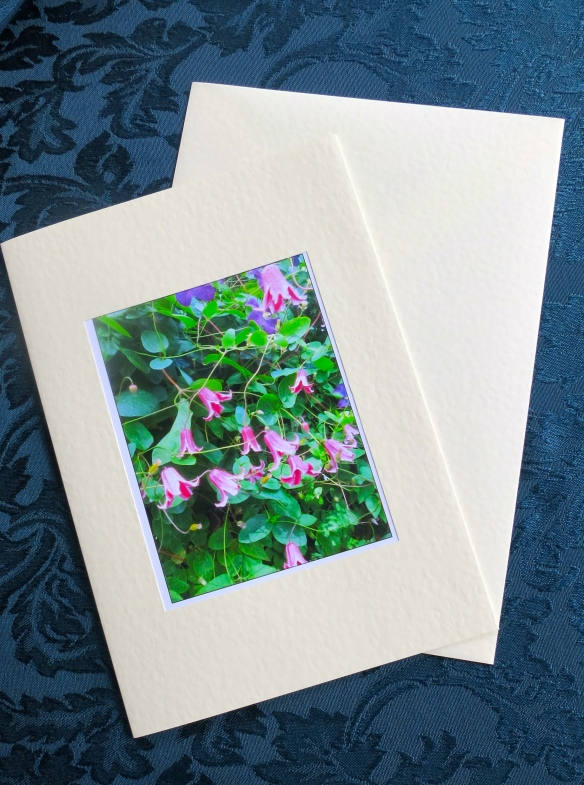 Clematis card (square)