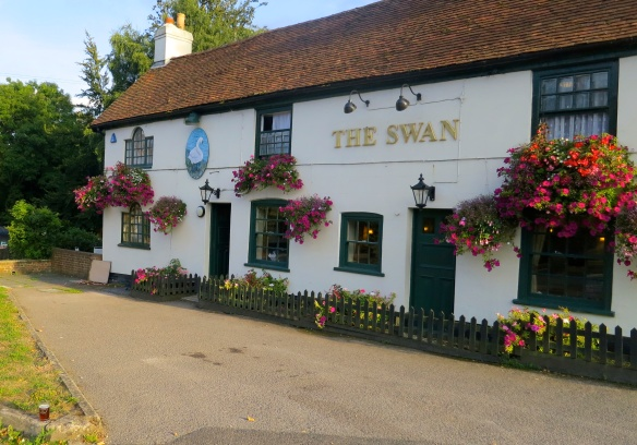 Pint at The Swan