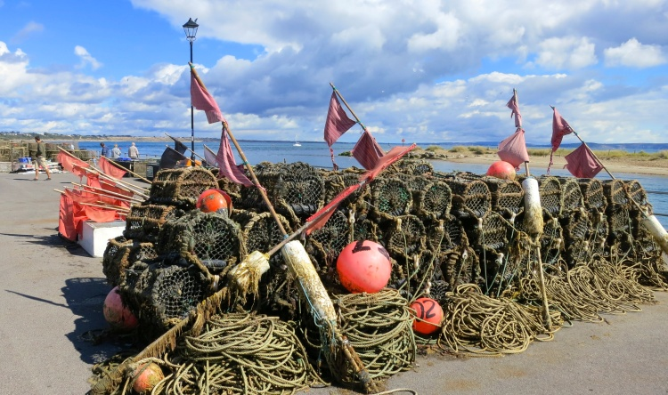Crab pots and flags
