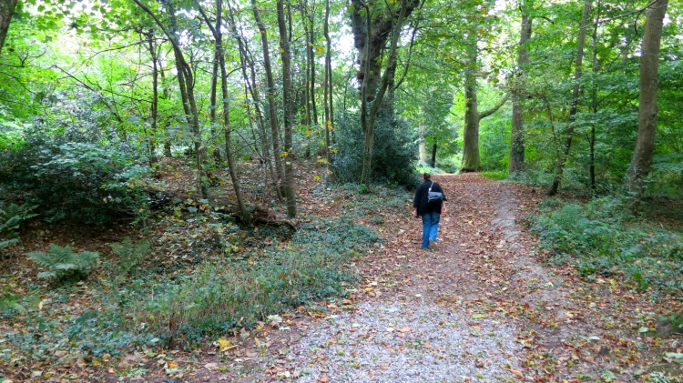 Footpath to Hardy's Cottage (Jackie)