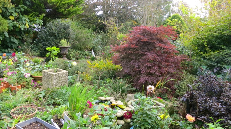 The Old Post House garden 1