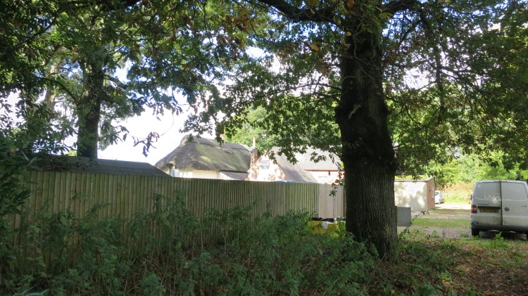 The Old Schoolhouse fro trees