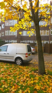 Neasden Lane autumn