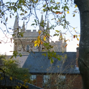 Wimborne Minster from Priest's House garden