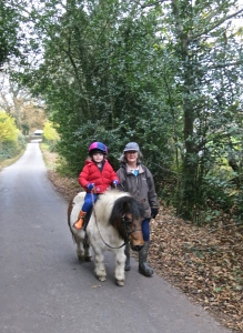 Child on Thelwell pony