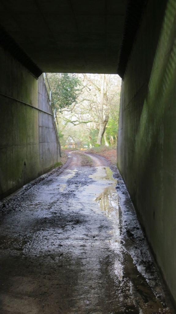 Underpass to Malwood farm