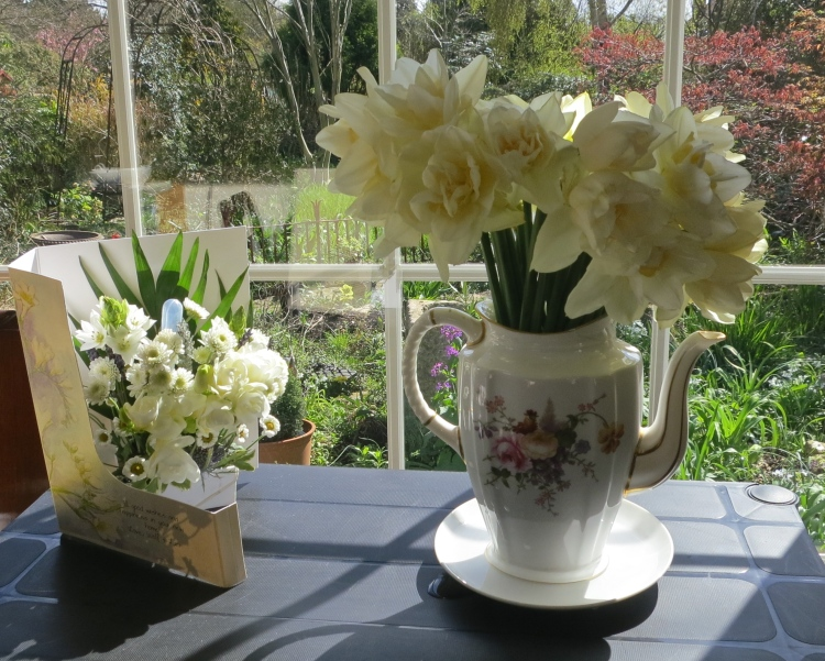 Flower card and daffodils