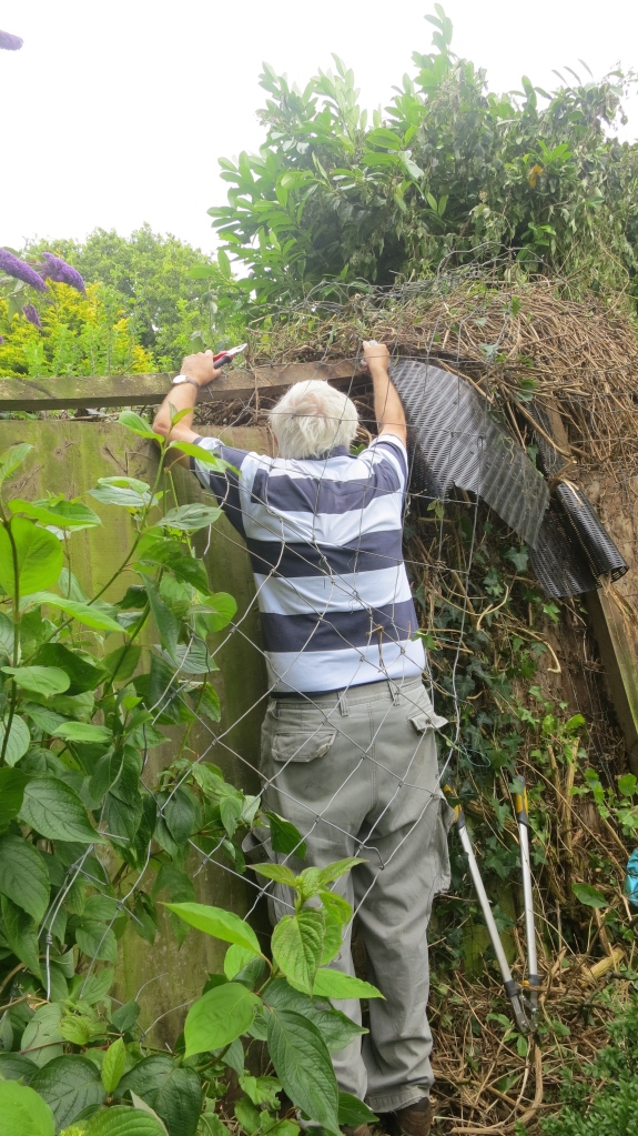 Derrick hacking wire on fence