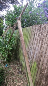 Framework off fence