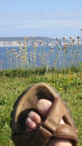 Isle of Wight through thrift and sandal