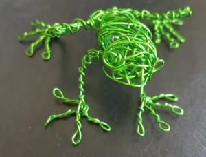 Flo's frog 2