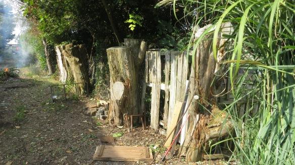 Back drive fence 1