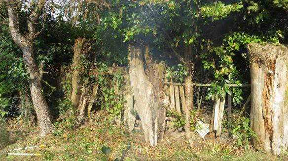 Back drive fence 4