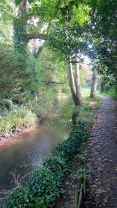 Footpath alongside stream