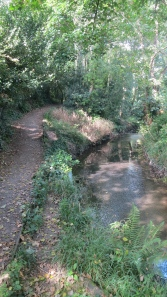 Footpath and stream