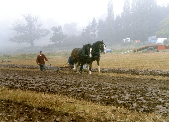 Ploughing contest 26.9.92 001