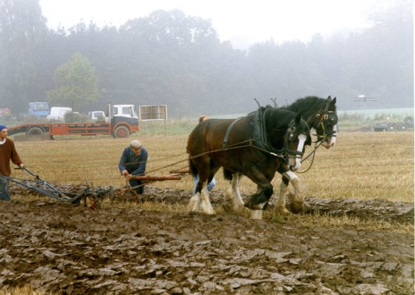Ploughing contest 26.9.92 002