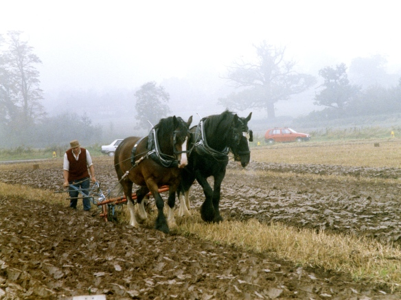 Ploughing contest 26.9.92 003