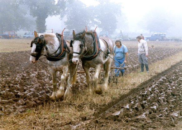 Ploughing contest 26.9.92 005