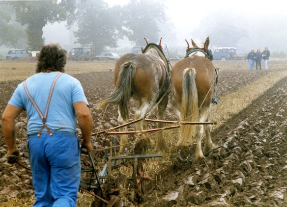 Ploughing contest 26.9.92 006