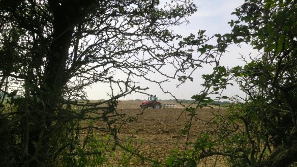 Ploughing1