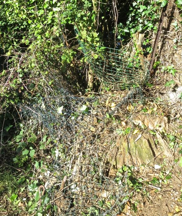 Wire netting 1