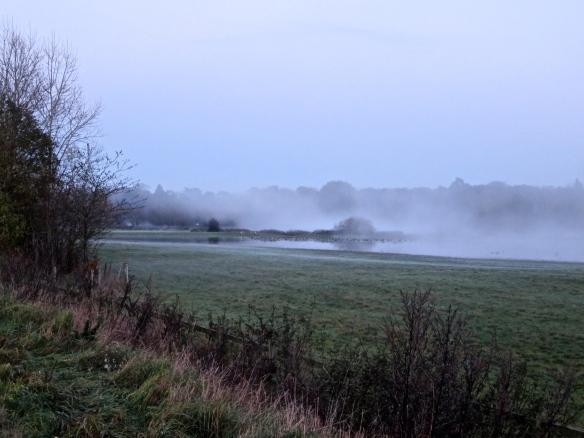 Misty landscape 1