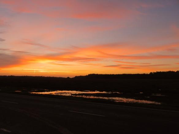 Sunset Dibden Purlieu