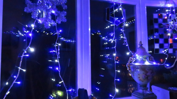 Christmas lights in study 2