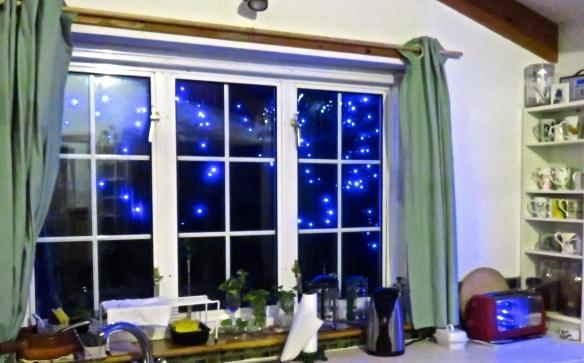Christmas lights through kitchen window.