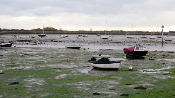 Emsworth harbour boats ang gulls