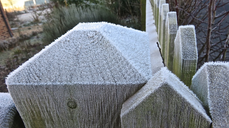 Frost on gateposts