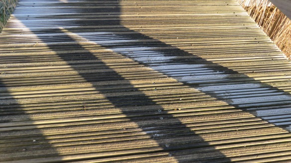 Frost on steps