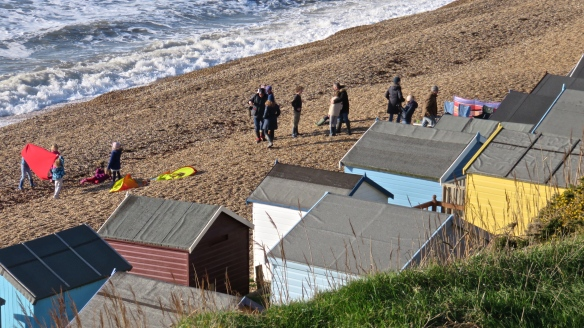 Group on shingle