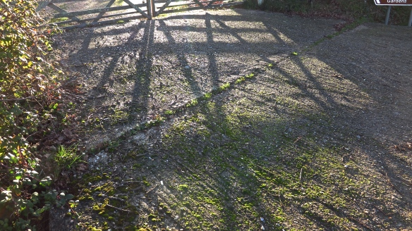 Shadow of gate