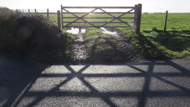 Shadows of five-barred gate