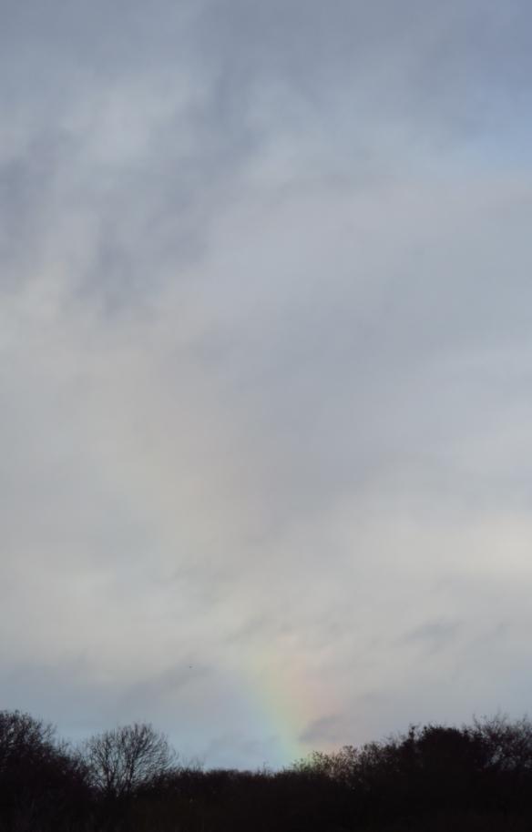 Skyscape with rainbow