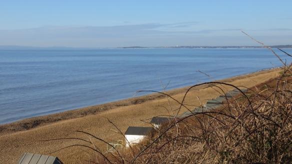 Blue sea and brambles
