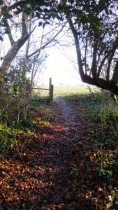 Downton through footpath