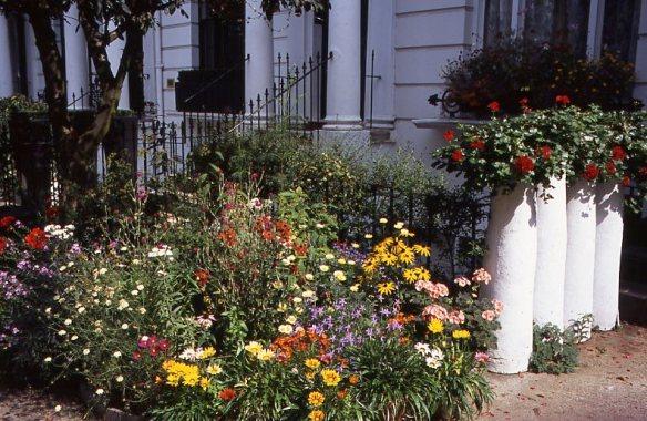 Garden Competition 8.08015 2