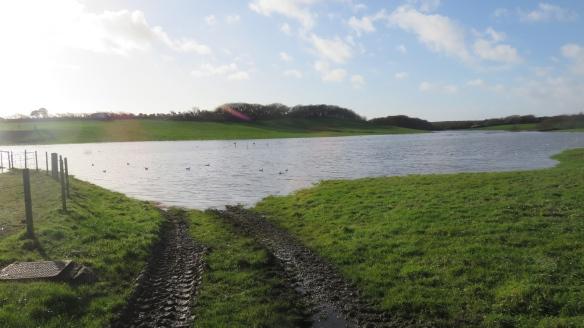 Lake on field